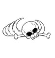 human remains isolated bones skeleton and skull vector image