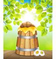 Keg of honey vector image