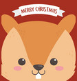 merry christmas celebration cute squirrel head vector image