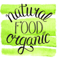 natural organic food vector image vector image