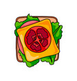 sandwich with cutted milk sausage and circle vector image vector image