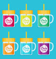 smoothie set flat vector image vector image