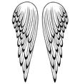 Wings angel vector image vector image