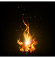 bonfire night vector image