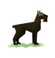 Giant Schnauzer Black Dog vector image vector image