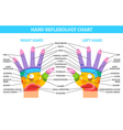 Hand Reflexology Chart vector image vector image