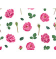 pink roses with petals and leaves seamless pattern vector image vector image