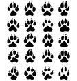 print dogs paws vector image vector image