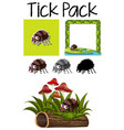 a pack of tick vector image vector image