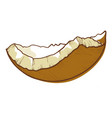 coconut broken shell icon tropical cracked fruit vector image vector image