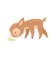 cute badeer grazing adorable forest fawn vector image vector image