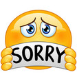 emoticon with sorry sign vector image vector image