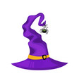 halloween witch hat and spider halloween icon vector image vector image