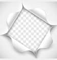 hole in white paper vector image vector image