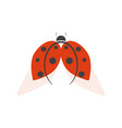 ladybird logo isolated on white background vector image vector image