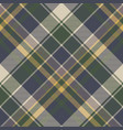 green blue classic check plaid seamless pattern vector image