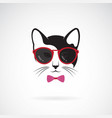 cats wear sunglasses on white background animal vector image