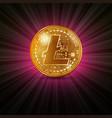 litecoin golden coin vector image vector image