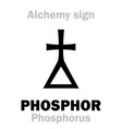 alchemy phosphor phosphorus vector image vector image