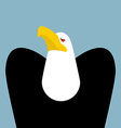 Bald Eagle Birds of prey portrait Hawk on blue vector image vector image