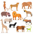 big set with african animals vector image vector image