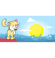 cat is on the roof and watching the city at sunset vector image vector image