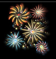fireworks in background vector image