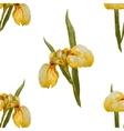 Iris flowers pattern vector image vector image