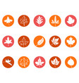 maple leaf round button icons vector image