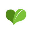 eco-friendly heart leaf vector image
