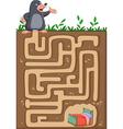 Help mole to find way home in an underground maze vector image
