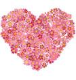heart shape pink sakura flowers splash vector image vector image