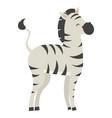 zebra cartoon a cute vector image