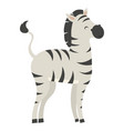 zebra cartoon a cute zebra vector image vector image