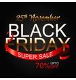 Black Friday 2 vector image