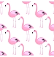 Flamingo seamless pattern Pink exotic bird vector image