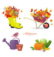 fresh collection autumn composition and gardening vector image vector image