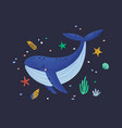 happy smiling whale isolated on dark background vector image