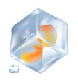 ice with orange cubes inside isolated vector image