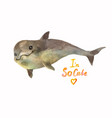 little dolphin greets you cool watercolor for vector image vector image