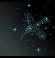 low poly blue hummingbird with dark green vector image vector image