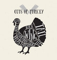 meat cuts - turkey diagrams for butcher shop vector image