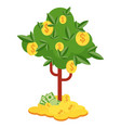 money tree with gold coins and paper dollars vector image vector image