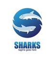 sharks letter based s symbol vector image vector image