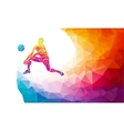 volleyball player team sport polygonal
