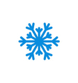 Christmas snowflake isolated vector image vector image