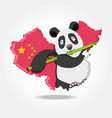 cute bear panda with china map of culture oriental vector image vector image