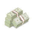 packing in bundles of dollars isometric 3d icon vector image vector image