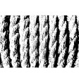 rope overlay texture vector image vector image