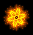 Abstract glowing light flower symbol of life and